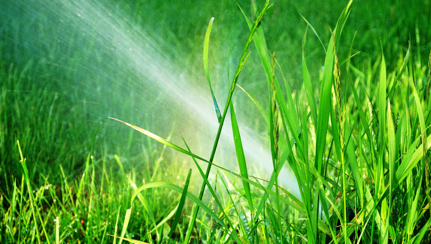 water your lawn efficiently water conservation tips for spring