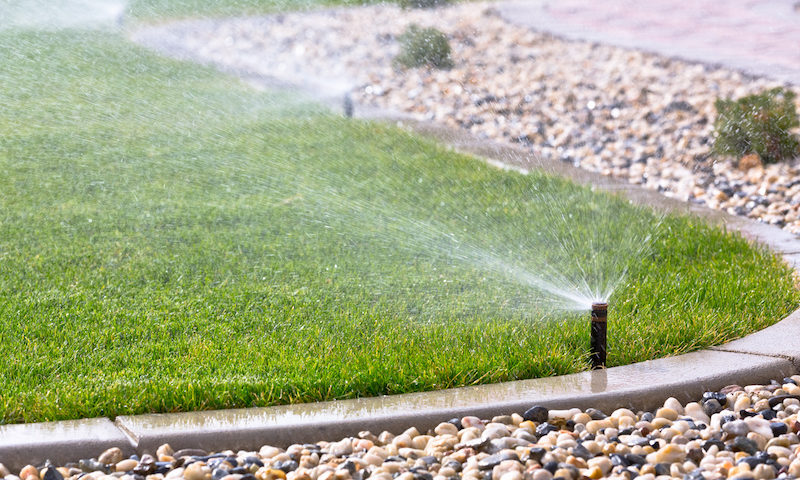 Will an Automatic Sprinkler System Help You Save Water?
