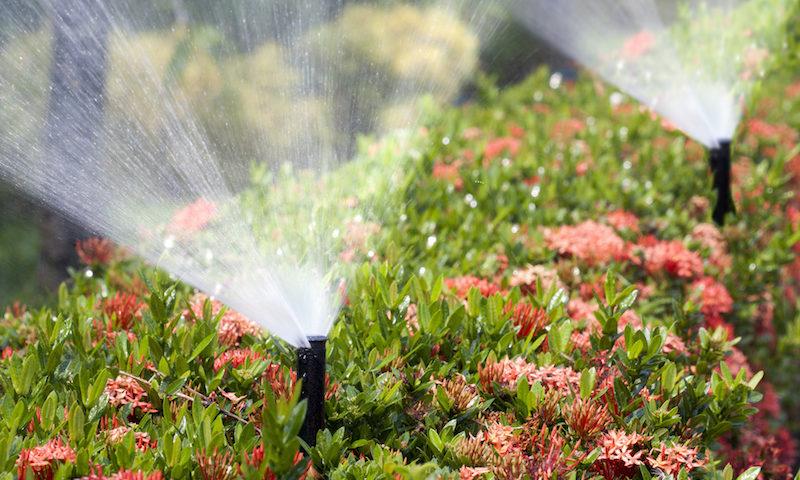 new sprinkler system