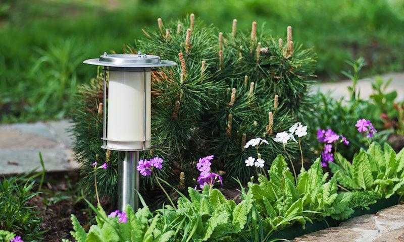 Maintenance landscape lighting, LED Lamp