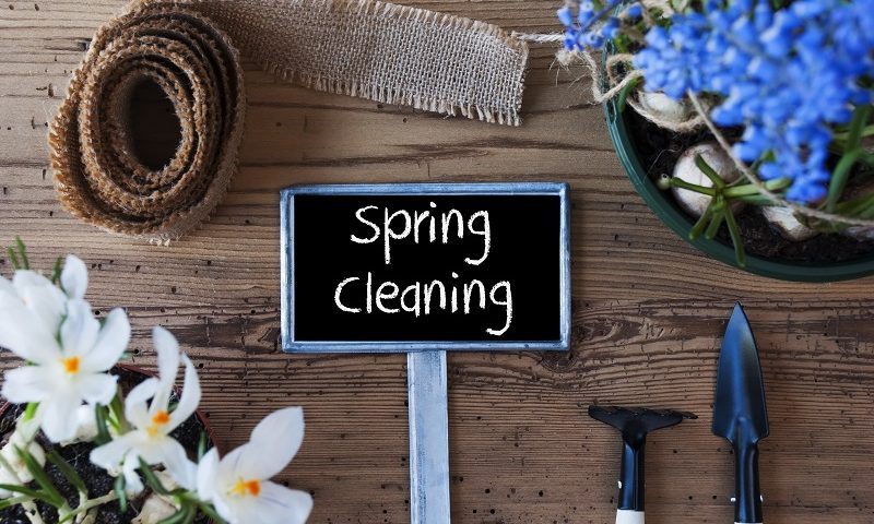 Spring cleaning and your landscape lighting