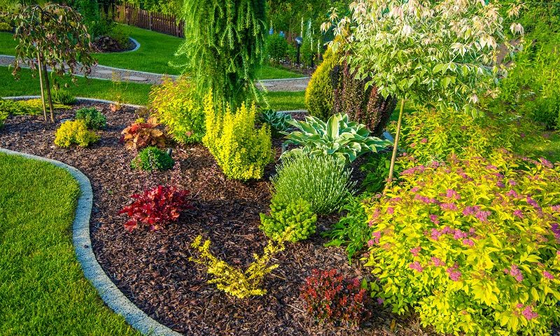 3 Tips to Update Your Garden with Quality Landscape Lighting