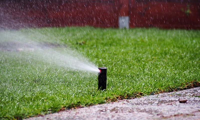 5 Key Points to Consider when Choosing a Sprinkler Contractor
