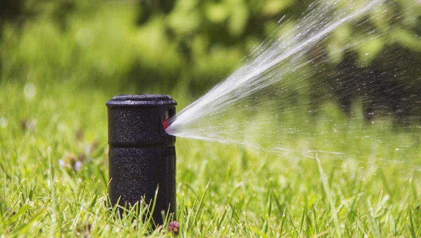 Preventing Broken Sprinkler Heads: What You Need to Know