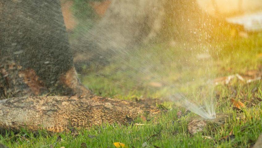 fall sprinkler maintenance kansas city