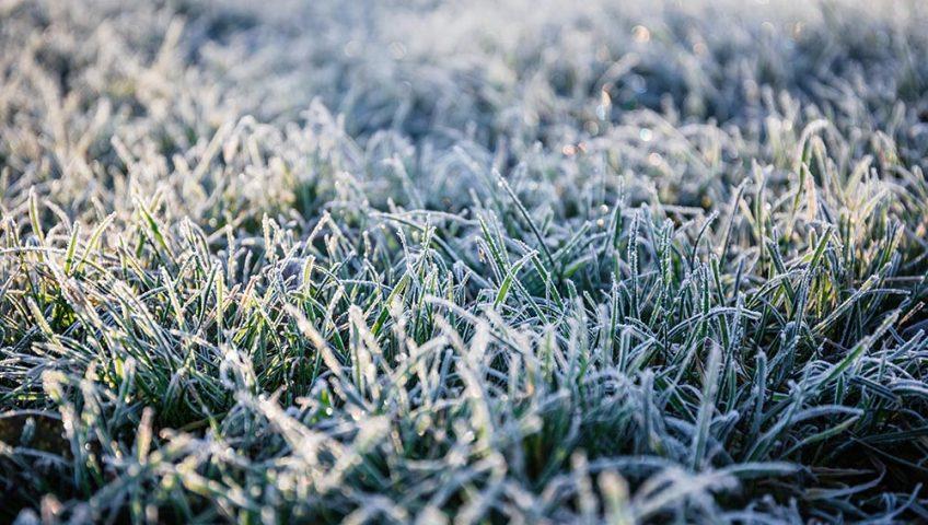 winter irrigation system kansas city