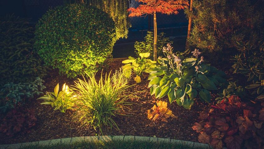 landscape lighting summer