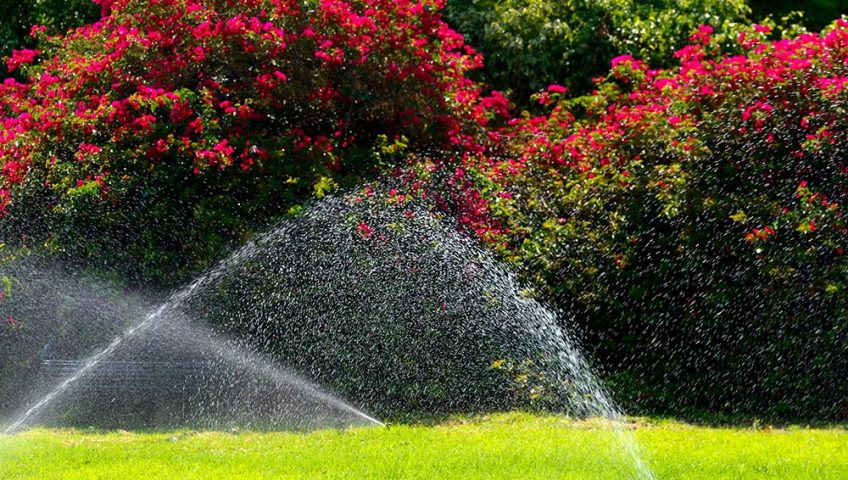 summer irrigation tips kansas city