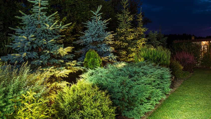 professional landscape lighting kansas city